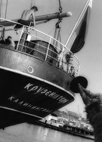 sailor - russian tall ship 'kruzenstern'