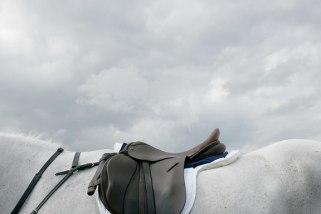 saddle and sky